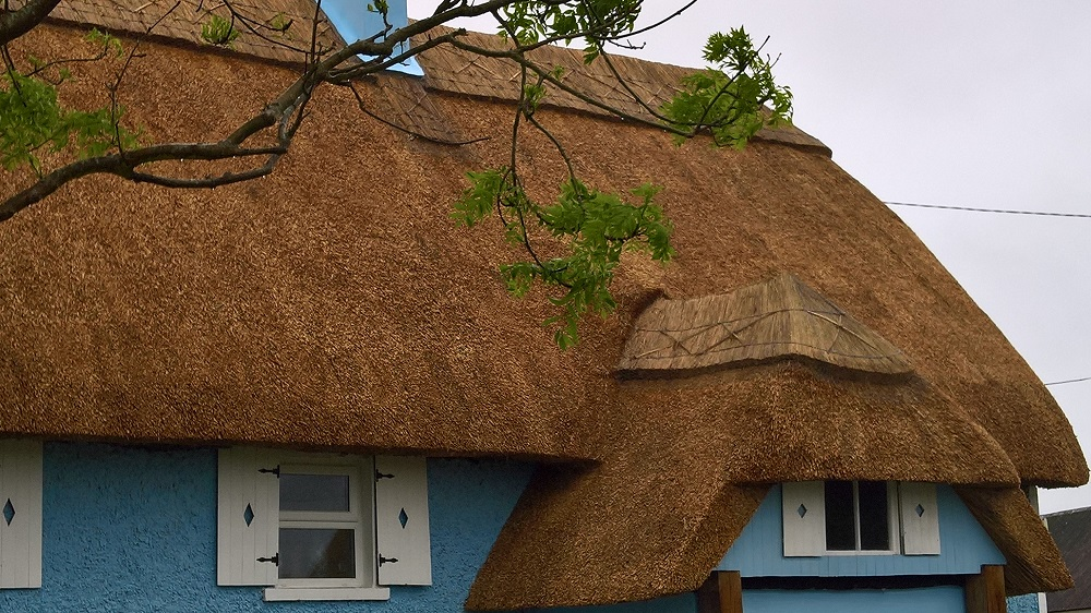 Thatch in Wexford, Ireland