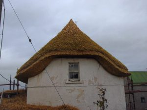 Find a thatcher on ThatchFinder. Discover Thatch and Thatching. Thatchers in Europe.