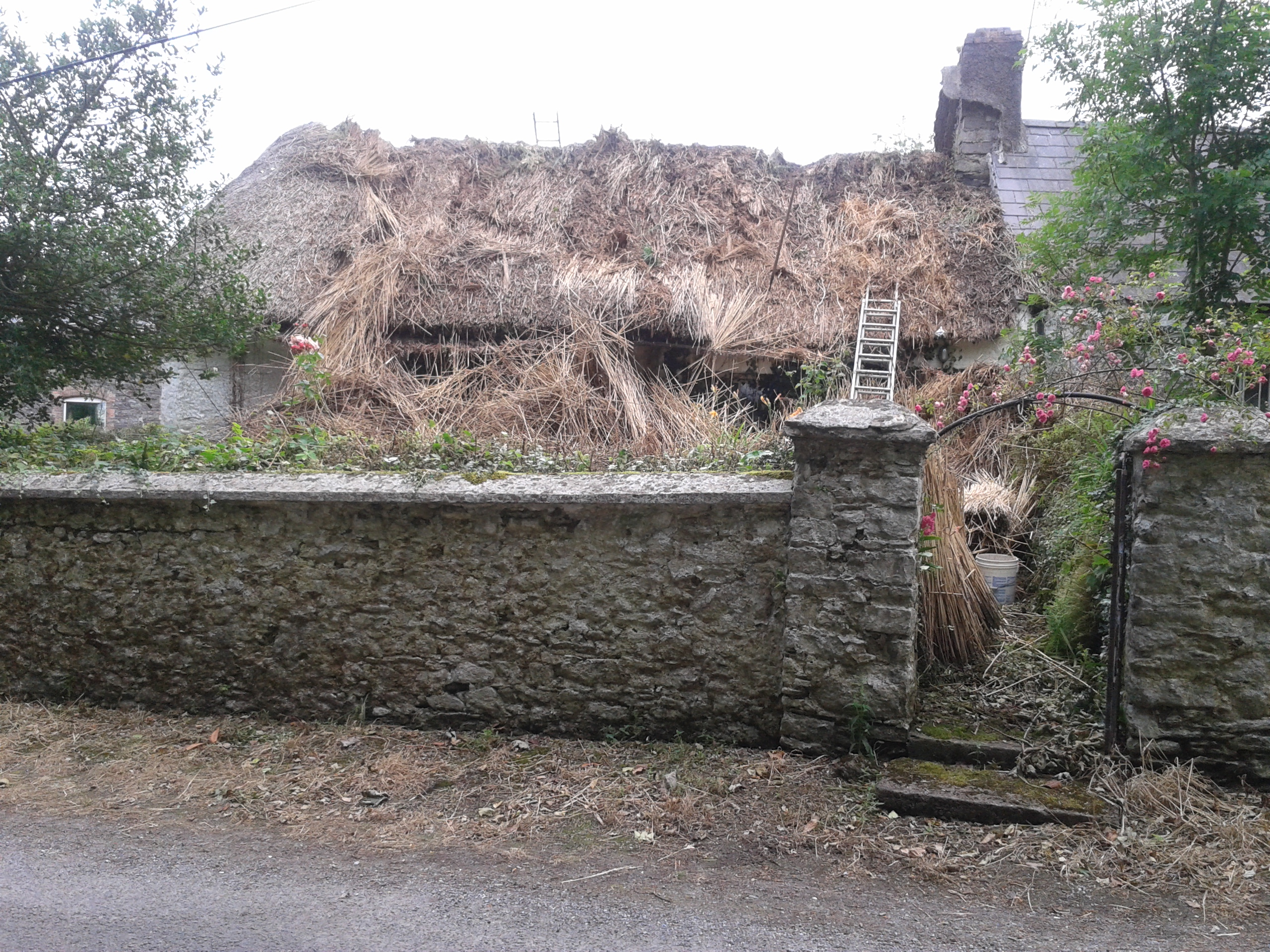 Barrys, Middleton. Cork. Thatching in Ireland.