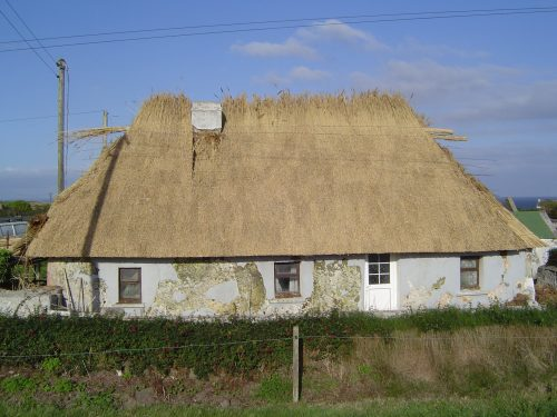 Thatching a cottage in Knockadoon