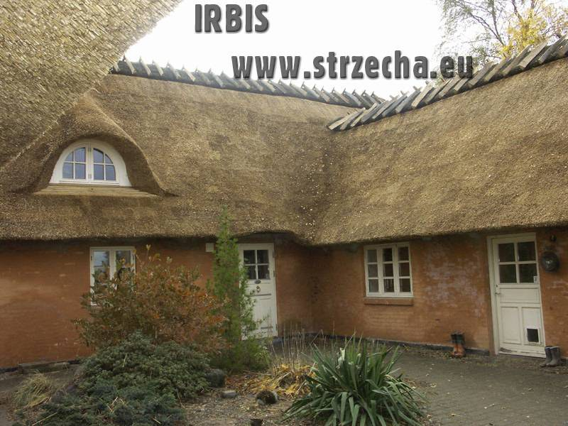 How long does a thatched roof last?