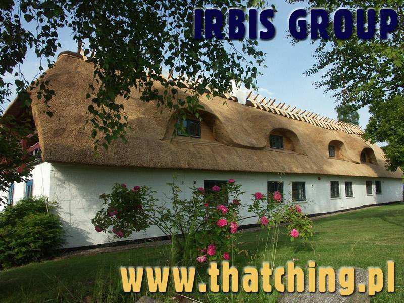 Windows for thatched roofs.