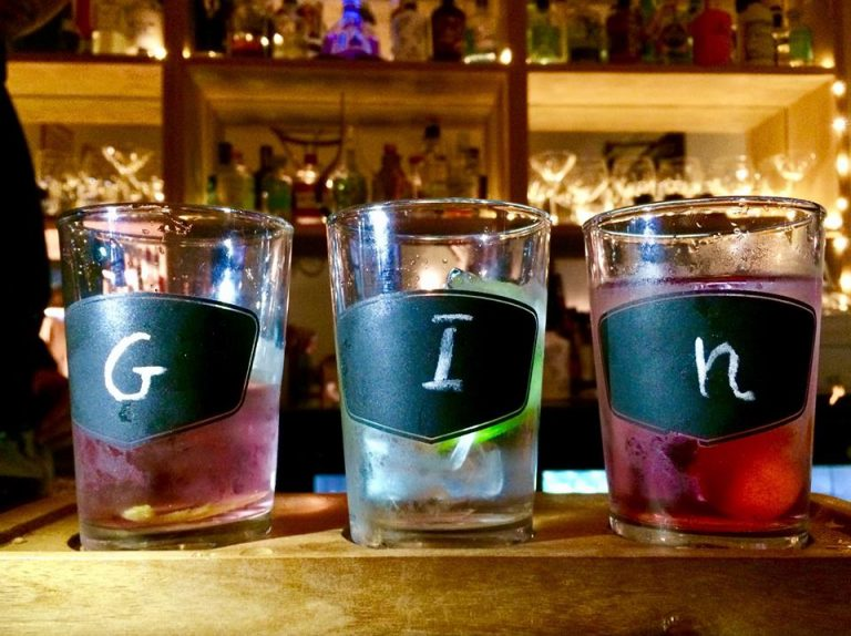 A dedicated Gin Bar in the New Forest National Park - Discover more on ThatchFinder