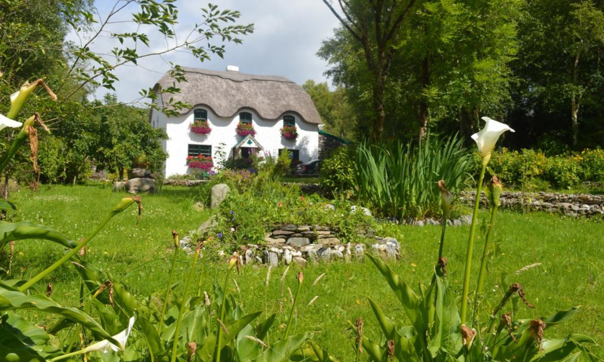 Lissyclearig Thatched Cottage B&B