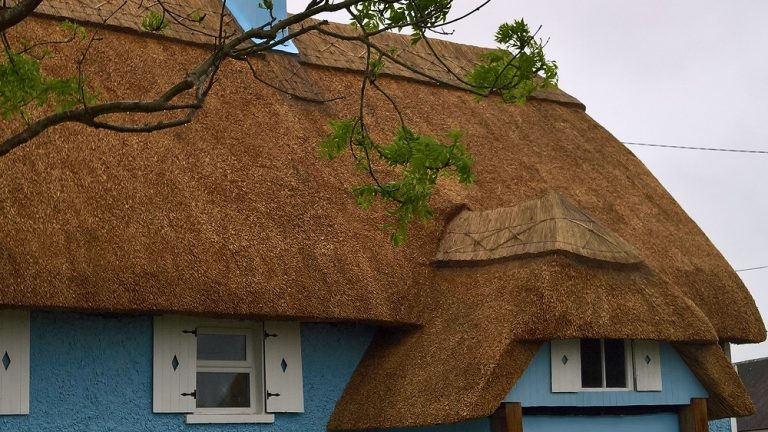 Thatched Cottage in County Wexford, Ireland