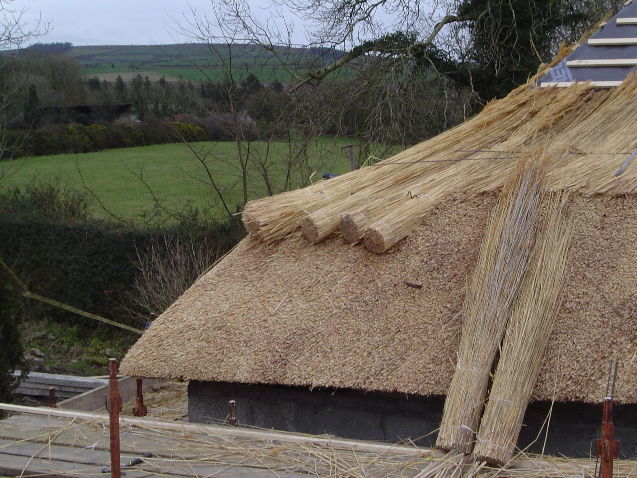 Roof Thatching with Water Reed.