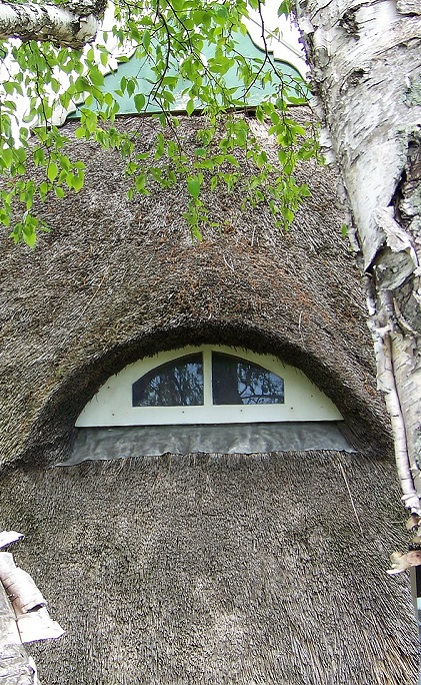 Thatched Roof Eyebrow Window. Thatched Roof Windows.