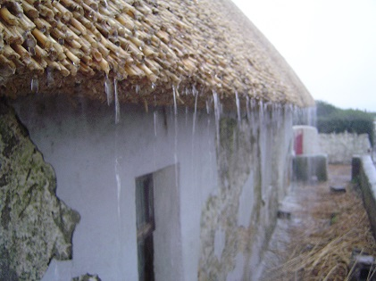 Thatched roof keeping the rain out. Roof thatching.