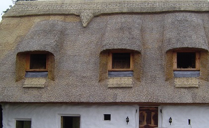 Thatched roof with 3 square windows.