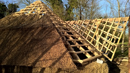 Thatching a wood framed roof.