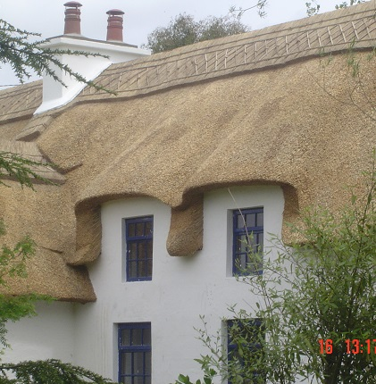 Reed Thatched Roof on a whitewashed cottage in County Wexford.
