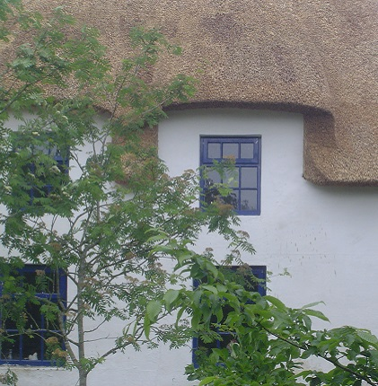 Thatched roof window ideas.