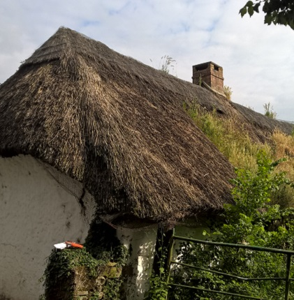 Thatched cottage in Ireland. Needs to find a roof thatcher.