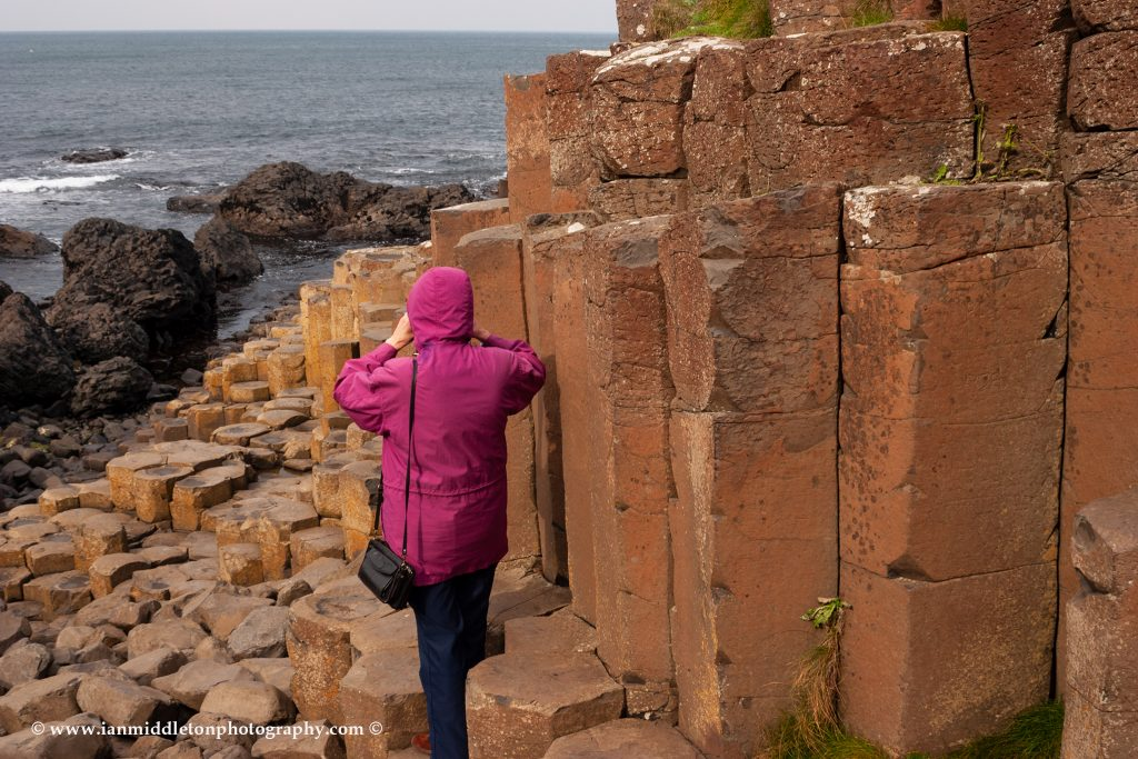 Giants Causeway, part of the National Trust, County Antrim, Northern Ireland.