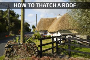 Thatched cottage near Ballinesker beach, County Wexford, Rep of Ireland
