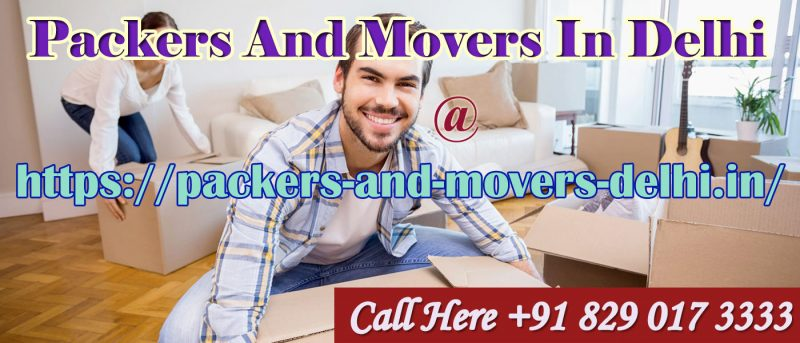 Packers And Movers Delhi Guide For Packing And Moving Your Kitchen Appliances