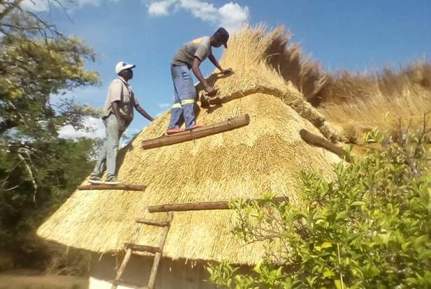 Thatching companies in Zimbabwe for more call or WhatsApp 07739747777 or 0772389998