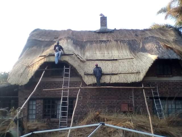 Rethatching a house in Zimbabwe