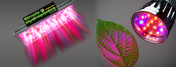Led Grow Lights Melbourne, Led Lights Hydroponics