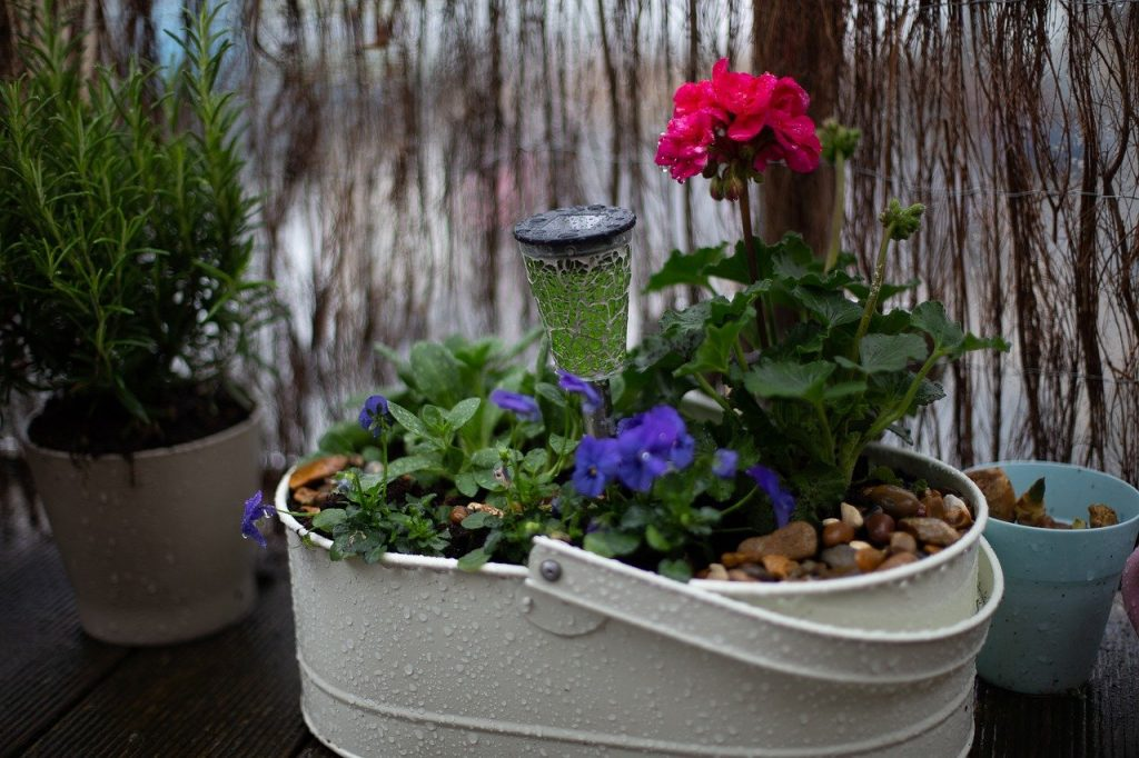 Flowers in a metal container